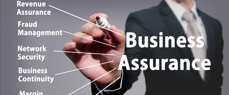 Business-process-assurance