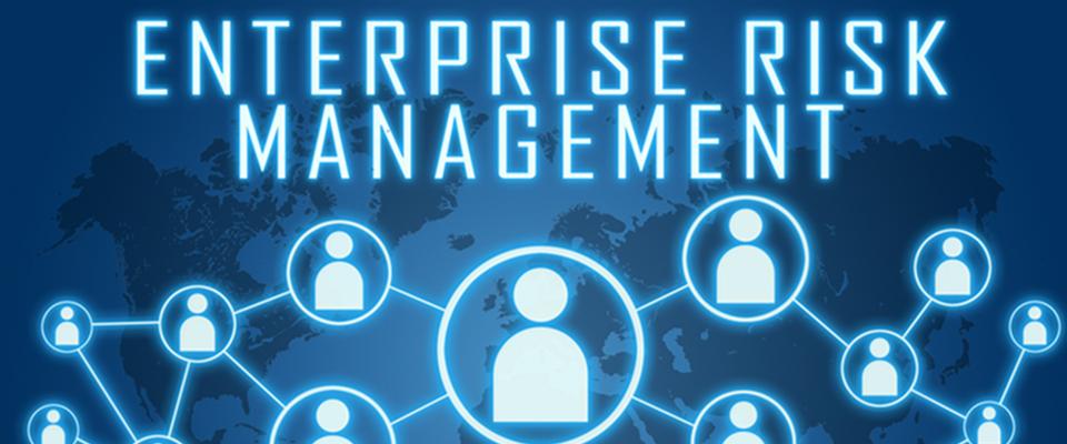 Enterprise-Risk-management